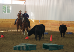 Martin Black Nov. Clinic