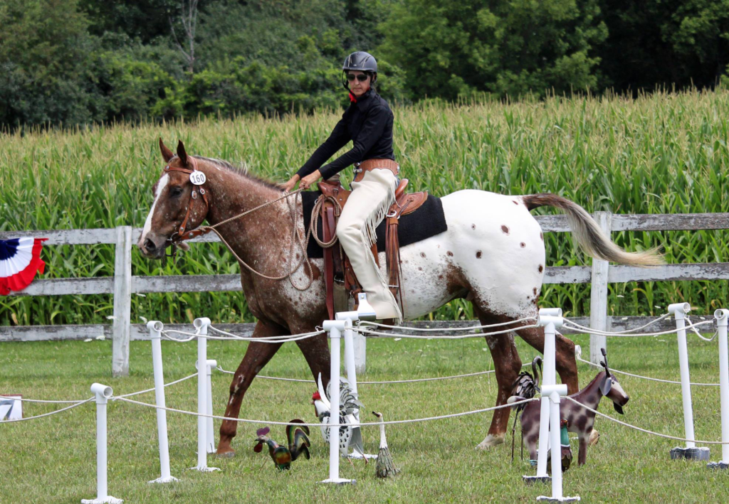 sterling-working-equitation